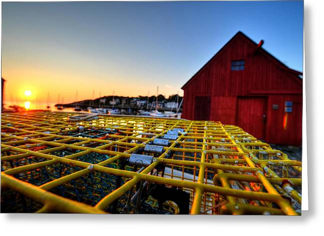 Motif 1 Lobster Trap Sunrise Greeting Card by Toby McGuire