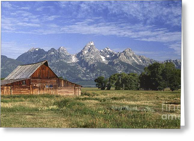 Old Wood Cabin Greeting Cards - Moulton Barn In The Tetons Greeting Card by Sandra Bronstein