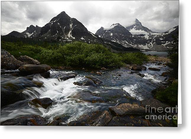 Mount Assiniboine Canada 15 Greeting Card by Bob Christopher