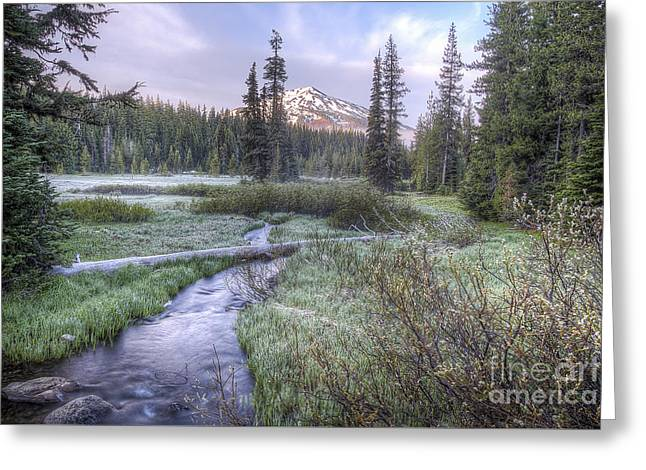 Sunriver Greeting Cards - Mount Bachelor from Soda Creek at Sunrise Greeting Card by Twenty Two North Photography