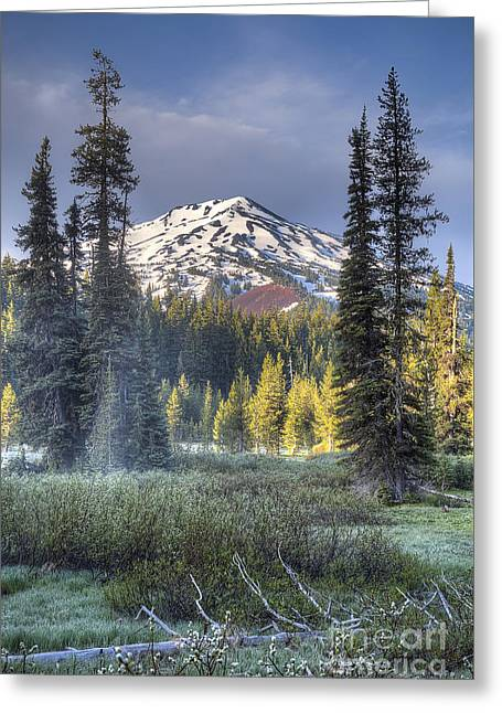 Sunriver Greeting Cards - Mount Bachelor over Meadow Greeting Card by Twenty Two North Photography