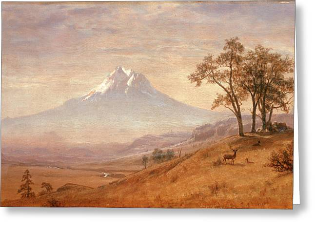 Bierstadt Greeting Cards - Mount Hood Greeting Card by Albert Bierstadt