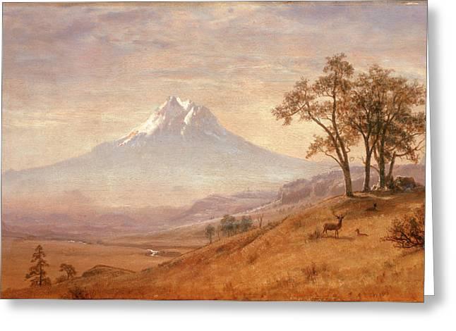 Mount Hood Greeting Card by Albert Bierstadt