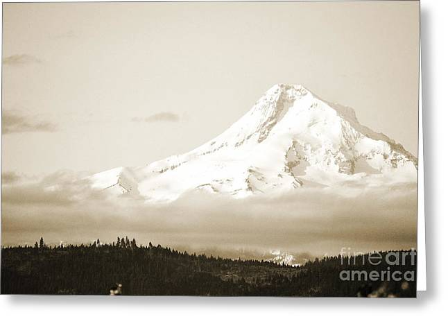 Black And White Waterfall Greeting Cards - Mount Hood Snow Greeting Card by Andrea Hazel Ihlefeld