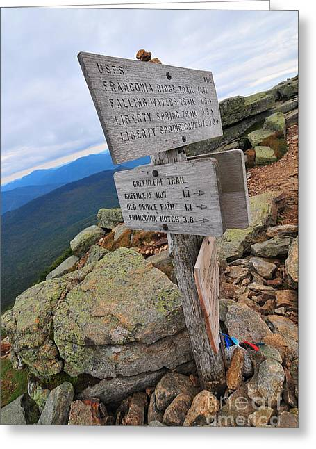 Mount Lafayette Summit Greeting Card by Catherine Reusch  Daley