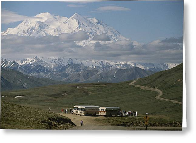 Tourists And Tourism Greeting Cards - Mount Mckinley And Tour Buses In Denali Greeting Card by George F. Herben
