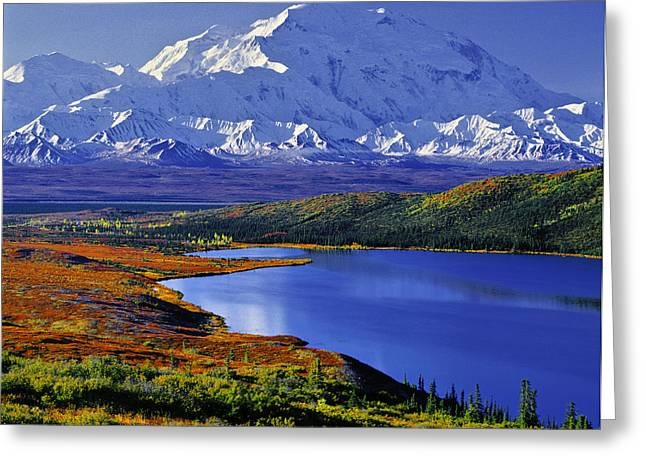 Denali National Park Greeting Cards - Mount McKinley and Wonder Lake Campground in the Fall Greeting Card by Tim Rayburn