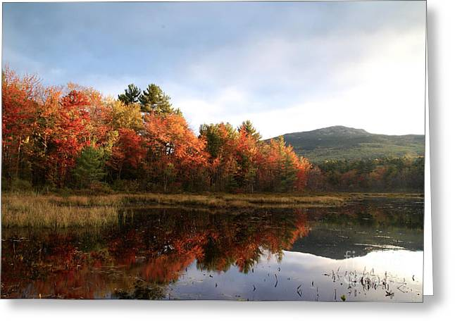 Concord Greeting Cards - Mount Monadnock foliage Greeting Card by Galen Trinkle