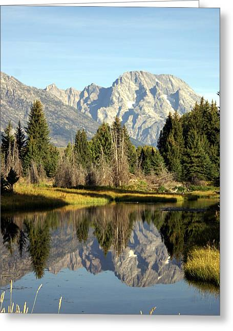 Mount Moran Reflections Greeting Card by Marty Koch