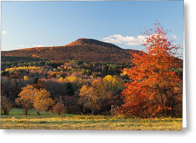 Mount Norwottuck In Fall Color From Mount Pollux. Greeting Card by Stephen Gingold