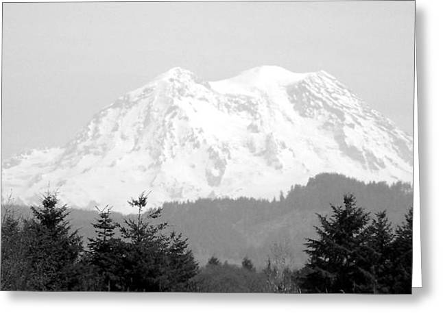 Pacific Pyrography Greeting Cards - Mount Rainier Black And White Greeting Card by Laurie Kidd