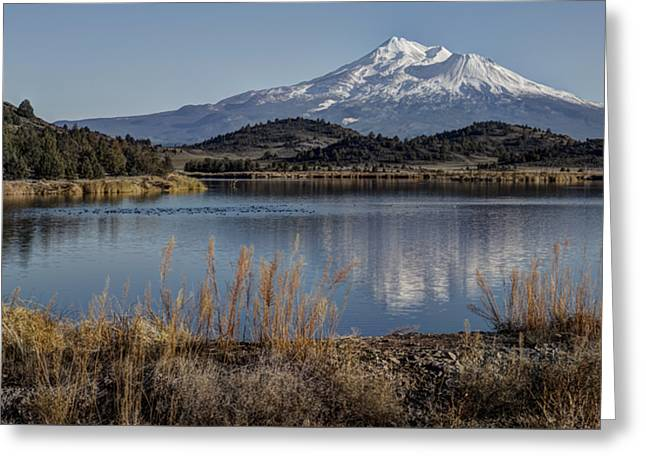 Mount Shasta And Trout Lake Greeting Card by Loree Johnson