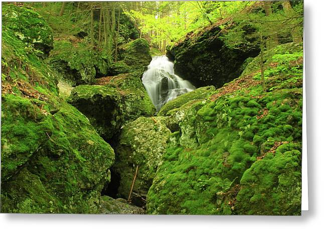 Toby Greeting Cards - Mount Toby Roaring Falls Ravine Greeting Card by John Burk