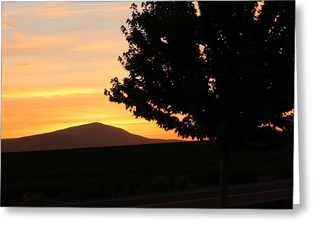 Grape Vineyard Greeting Cards - Mountain at Sunset Greeting Card by Larry Anderson