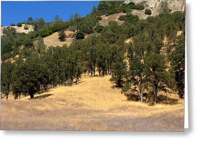 Mountain Colors Greeting Card by Brad Scott
