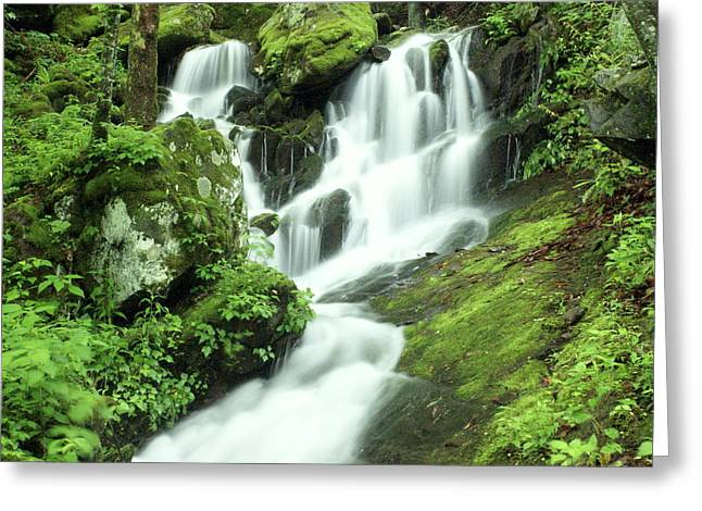 Smoky Mountain National Pall Greeting Cards - Mountain Falls Greeting Card by Marty Koch