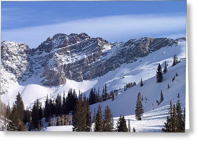 Powder Greeting Cards - Mountain High - Salt Lake UT Greeting Card by Christine Till