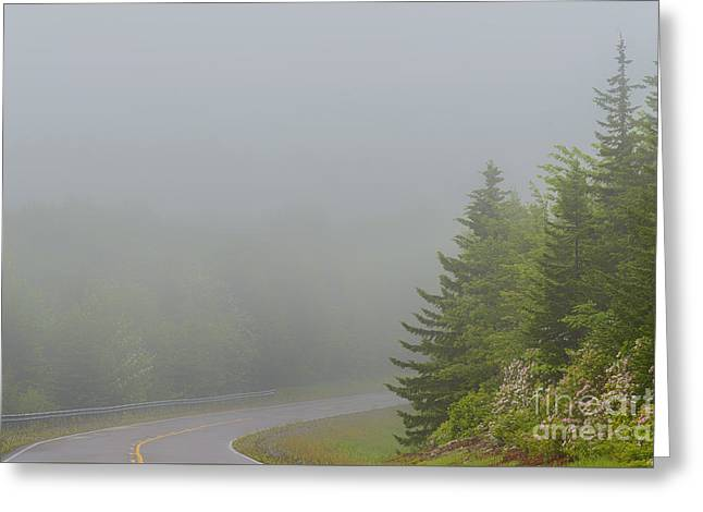 Woodland Scenes Greeting Cards - Mountain Laurel Highway in Mist Greeting Card by Thomas R Fletcher