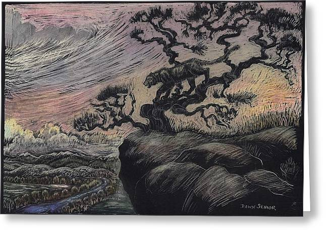 Gnarled Drawings Greeting Cards - Mountain Lion at Sunset Greeting Card by Dawn Senior-Trask
