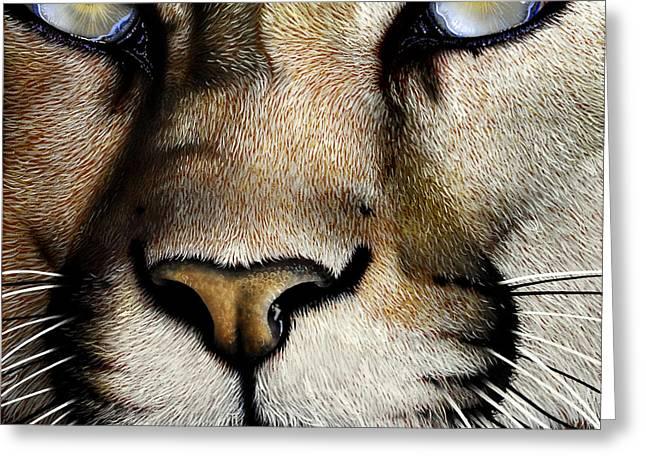 Mountain Lion Greeting Card by Jurek Zamoyski