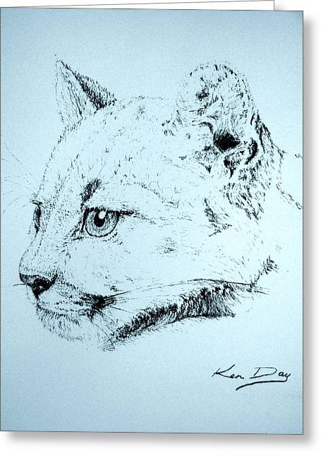 Lions Greeting Cards - Mountain Lion Greeting Card by Ken Day