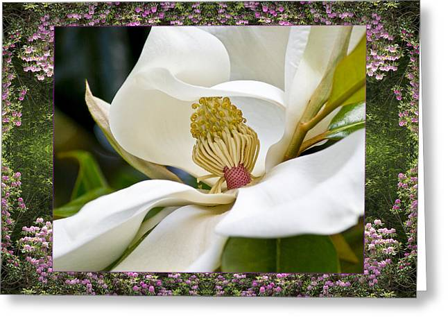 Sacred Geometry Photographs Greeting Cards - Mountain Magnolia Greeting Card by Bell And Todd