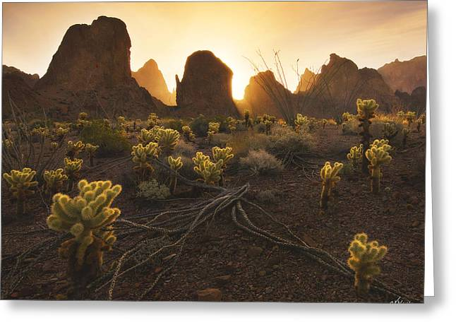 Wildlife Refuge. Greeting Cards - Mountain Minions Greeting Card by Peter Coskun