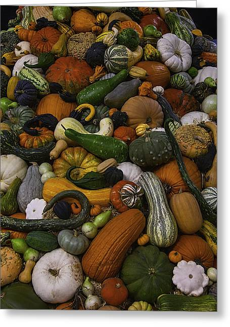 Mountain Of Squash Greeting Card by Garry Gay