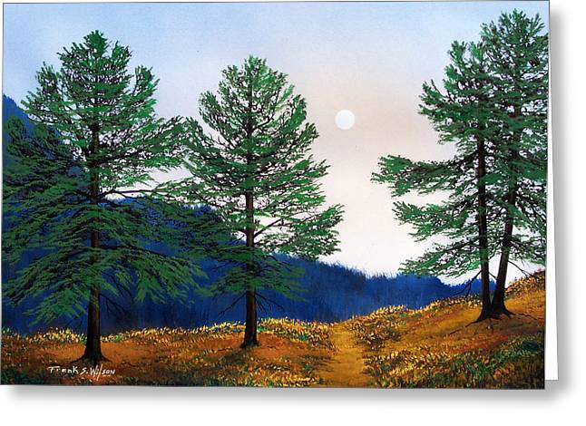 Mountain Pines Greeting Card by Frank Wilson