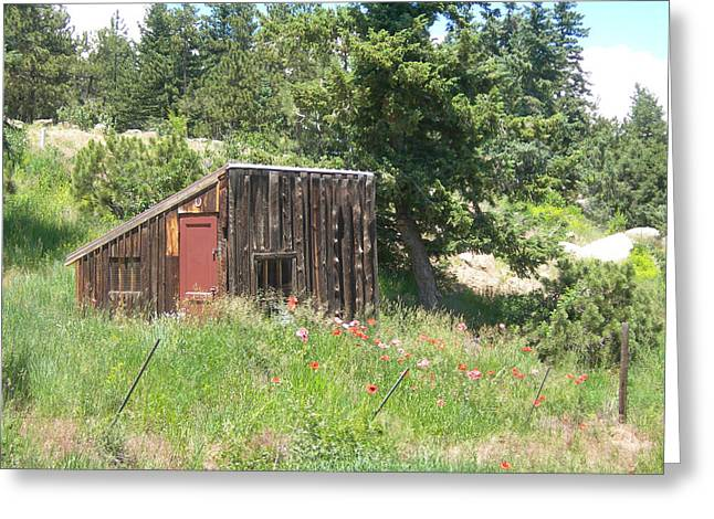 Sheds Greeting Cards - Mountain Shack Greeting Card by Lorraine Baum