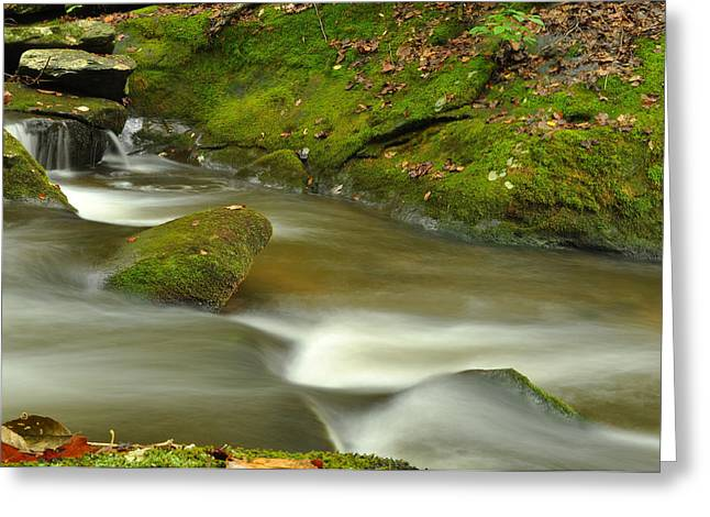Great Smokey Mountains Greeting Cards - Mountain Stream 1 Greeting Card by William Jones