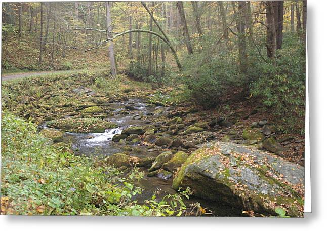 Roaring Fork Road Photographs Greeting Cards - Mountain Stream Greeting Card by Cindy and Dave Hicks