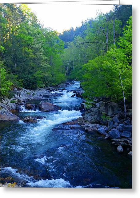 Beautiful Creek Greeting Cards - Mountain Stream Greeting Card by Michael Rucker