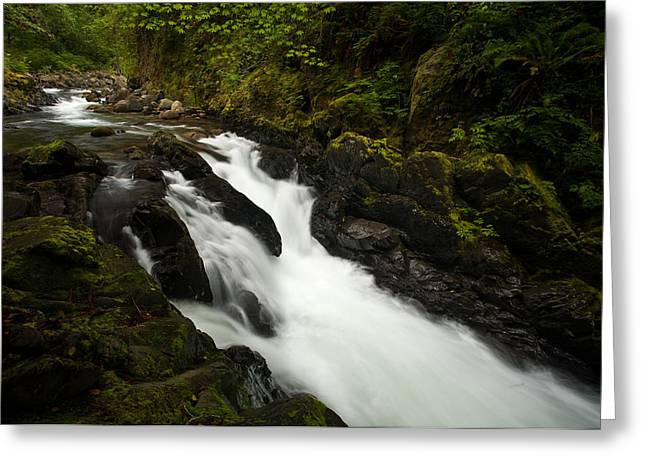 Mountain Stream Greeting Card by Mike Reid