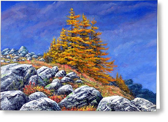 New Hampshire Greeting Cards - Mountain Tamaracks Greeting Card by Frank Wilson