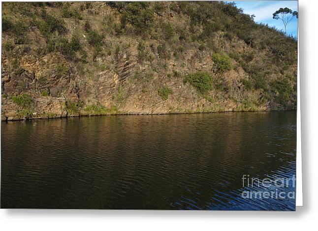 Nature Greeting Cards - Mountain tree and river Greeting Card by Angelo DeVal