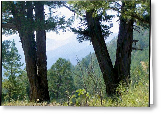 Montana Greeting Cards - Mountain View Greeting Card by Susan Kinney