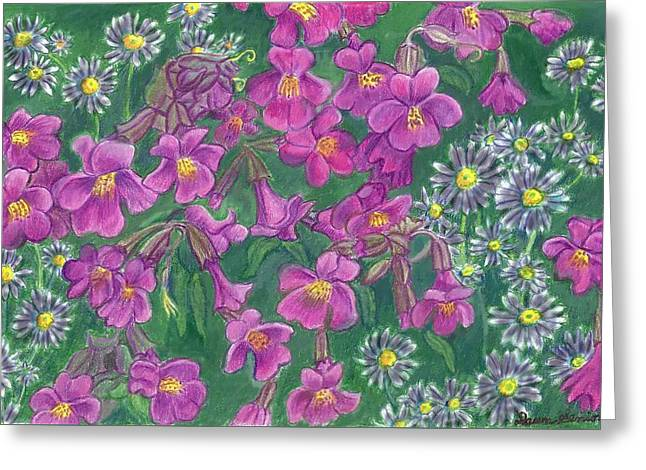Aster Drawings Greeting Cards - Mountain Wild Flowers Greeting Card by Dawn Senior-Trask