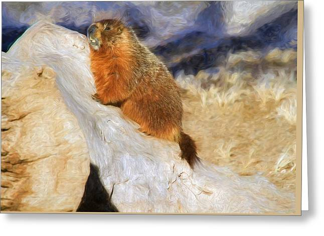 Groundhog Photographs Greeting Cards - Mountains To Climb Greeting Card by Donna Kennedy