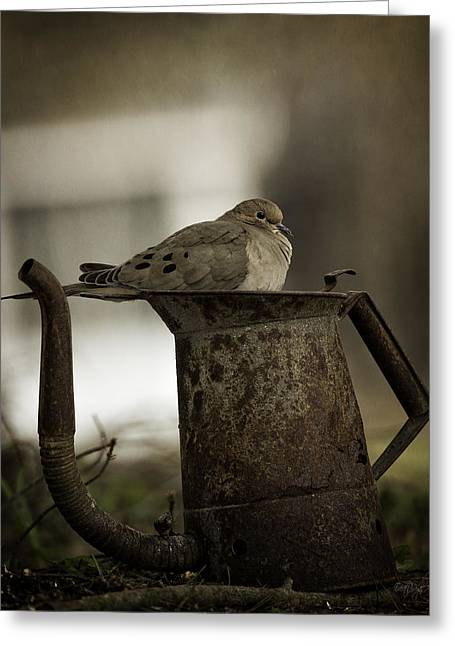 Fledglings Greeting Cards - Mourning Watchtower Greeting Card by Everet Regal