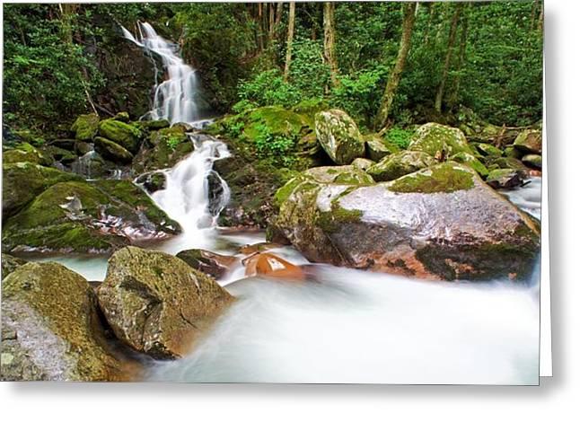 Blue Ridge Parkway In Fall Greeting Cards - Mouse Creek Falls - North Carolina Waterfalls Series Ultra Wide Greeting Card by Matt Plyler