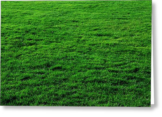 Mow Greeting Cards - Mow the Lawn Greeting Card by Cynthia Decker