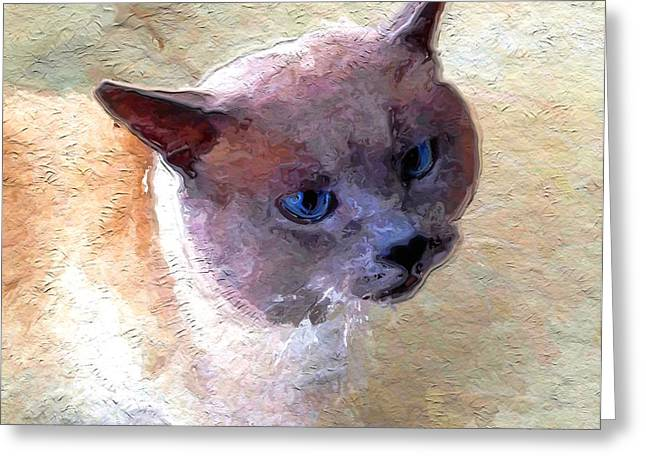 Charlotte Digital Art Greeting Cards - Mr Gray Cat Greeting Card by Morgan Carter