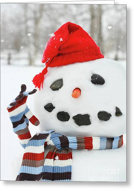 Background Greeting Cards - Mr. Snowman Greeting Card by Sandra Cunningham
