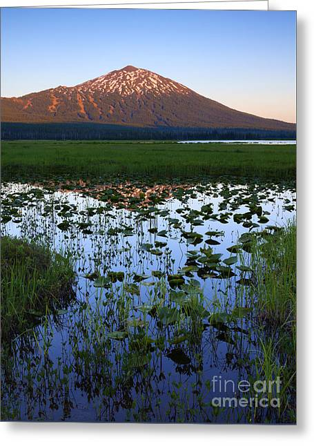 Mt. Bachelor Sunset Greeting Card by Mike Dawson