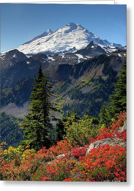 Summit Greeting Cards - Mt. Baker Autumn Greeting Card by Winston Rockwell