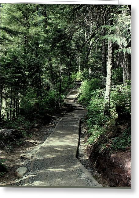 Jordan Trail Greeting Cards - Mt Baker Snoqualmie Trail Greeting Card by Rosanne Jordan