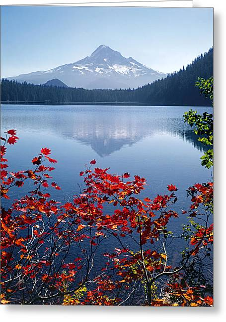 Rocks Greeting Cards - Mt. Hood from Lost Lake 1M5107-V Greeting Card by Ed  Cooper Photography