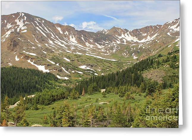 Mt. Massive Greeting Cards - Mt. Massive Wilderness 2 Greeting Card by Tonya Hance