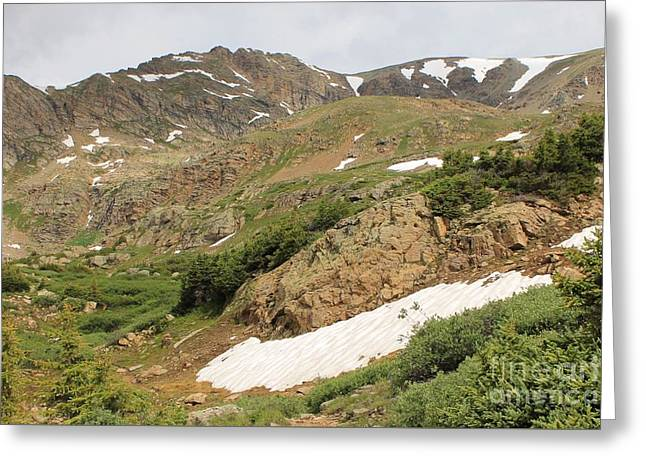 Mt. Massive Greeting Cards - Mt. Massive Wilderness Greeting Card by Tonya Hance
